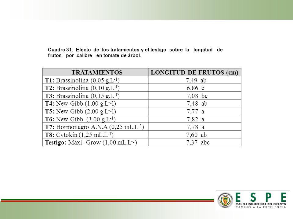 Cuadro 31. Efecto de los tratamientos y el testigo sobre la longitud de frutos por calibre en tomate de árbol. TRATAMIENTOSLONGITUD DE FRUTOS (cm) T1: