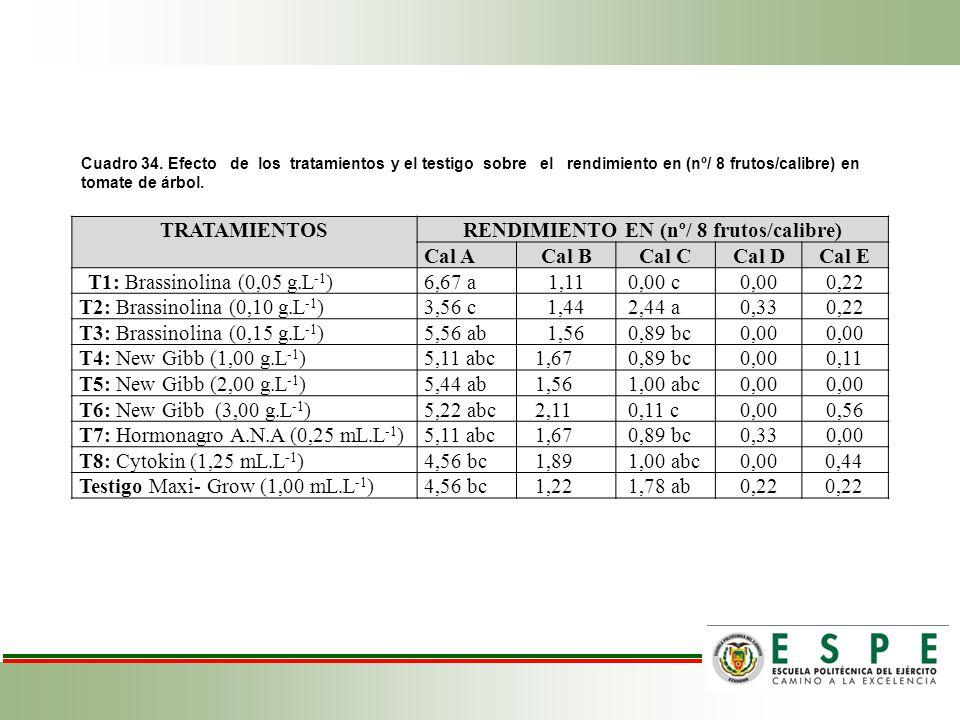 Cuadro 34. Efecto de los tratamientos y el testigo sobre el rendimiento en (nº/ 8 frutos/calibre) en tomate de árbol. TRATAMIENTOSRENDIMIENTO EN (nº/
