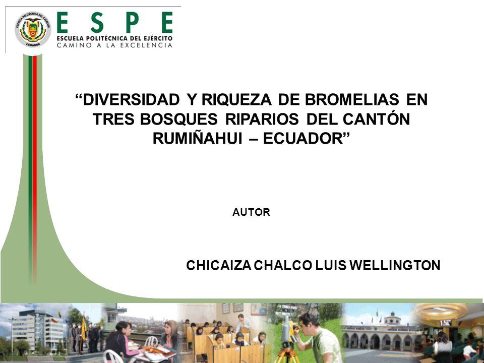 DIVERSIDAD Y RIQUEZA DE BROMELIAS EN TRES BOSQUES RIPARIOS DEL CANTÓN RUMIÑAHUI – ECUADOR AUTOR CHICAIZA CHALCO LUIS WELLINGTON
