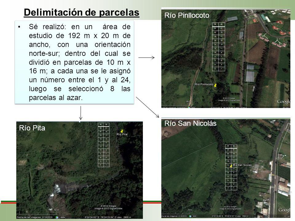 Sé realizó: en un área de estudio de 192 m x 20 m de ancho, con una orientación norte-sur; dentro del cual se dividió en parcelas de 10 m x 16 m; a ca