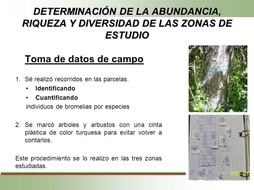 DETERMINACIÓN DE LA ABUNDANCIA, RIQUEZA Y DIVERSIDAD DE LAS ZONAS DE ESTUDIO Toma de datos de campo 1.Sé realizó recorridos en las parcelas. Identific