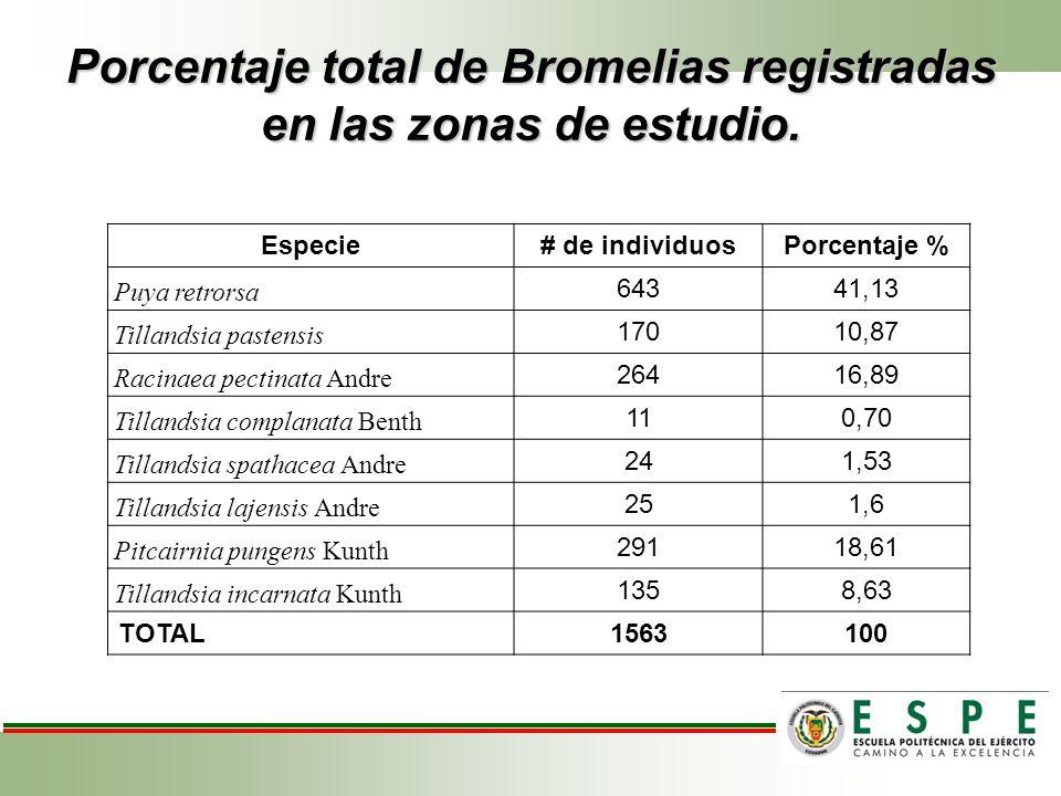 Porcentaje total de Bromelias registradas en las zonas de estudio. Especie# de individuosPorcentaje % Puya retrorsa 64341,13 Tillandsia pastensis 1701
