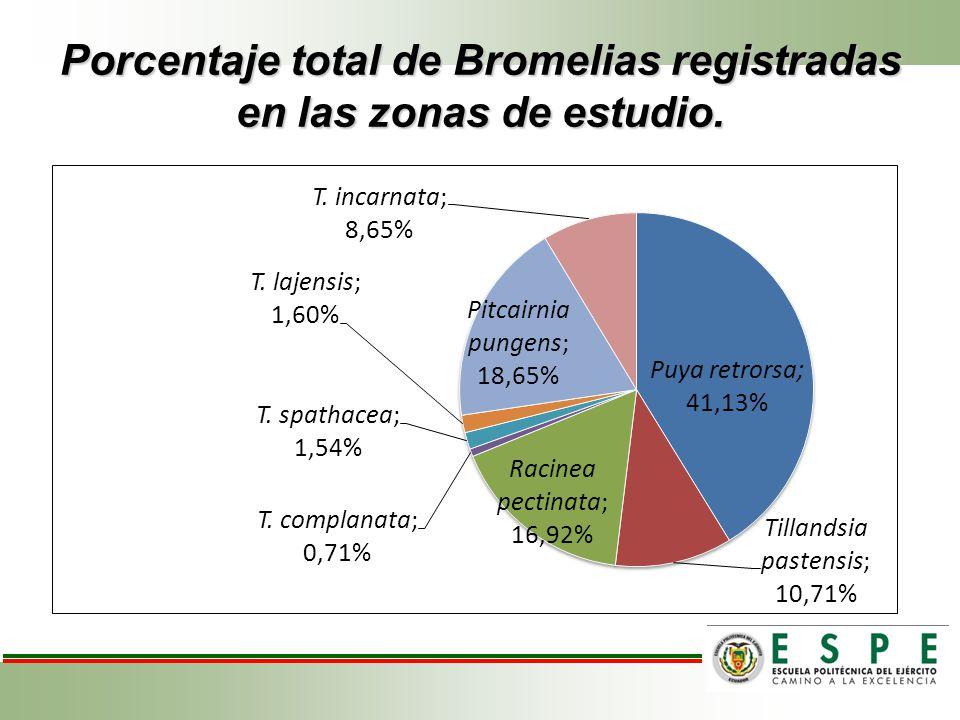 Porcentaje total de Bromelias registradas en las zonas de estudio.