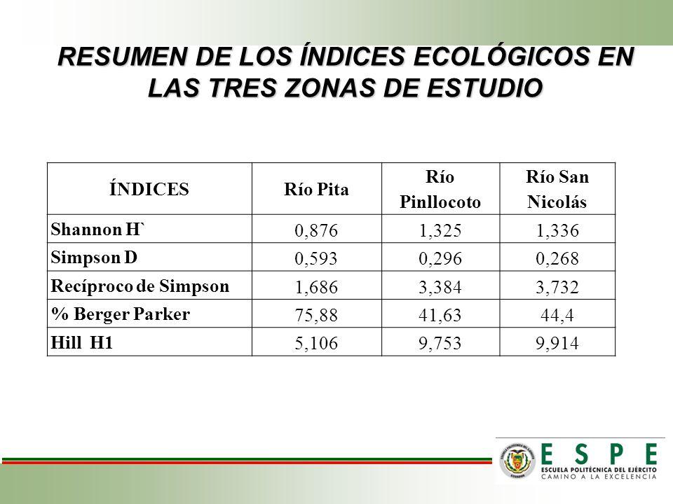 RESUMEN DE LOS ÍNDICES ECOLÓGICOS EN LAS TRES ZONAS DE ESTUDIO ÍNDICESRío Pita Río Pinllocoto Río San Nicolás Shannon H` 0,8761,3251,336 Simpson D 0,5