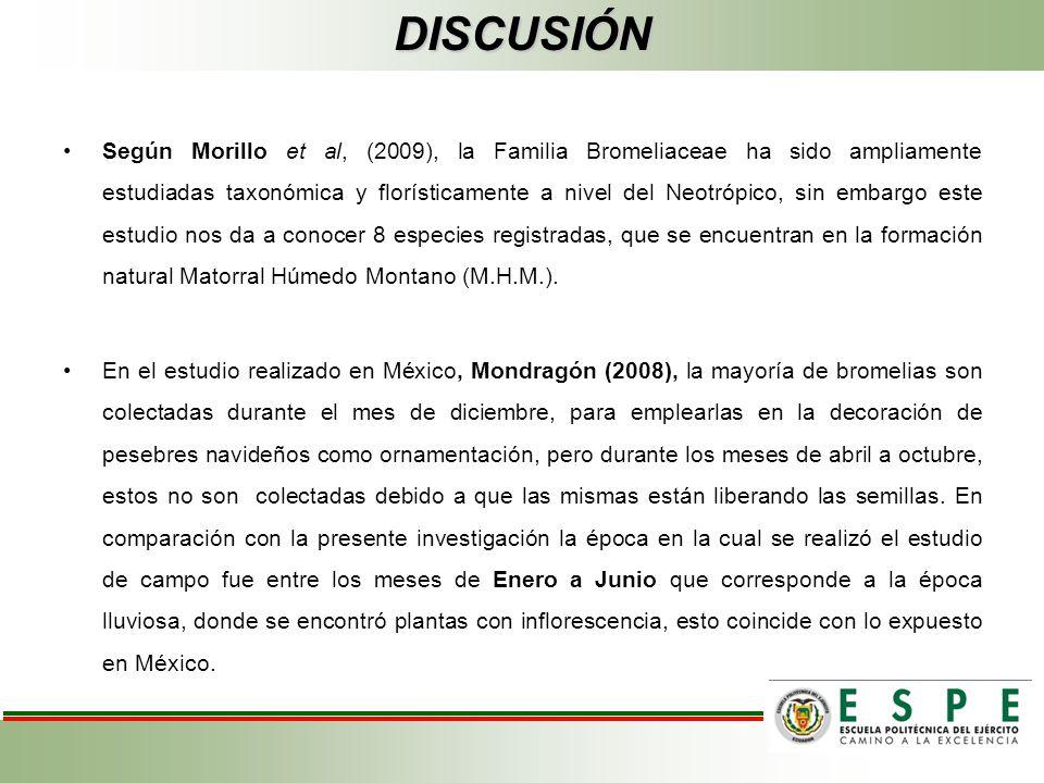 DISCUSIÓN Según Morillo et al, (2009), la Familia Bromeliaceae ha sido ampliamente estudiadas taxonómica y florísticamente a nivel del Neotrópico, sin embargo este estudio nos da a conocer 8 especies registradas, que se encuentran en la formación natural Matorral Húmedo Montano (M.H.M.).