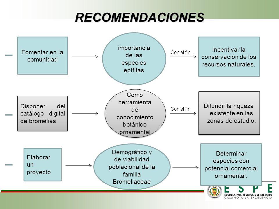 Fomentar en la comunidad importancia de las especies epífitas Incentivar la conservación de los recursos naturales. Con el fin Disponer del catálogo d
