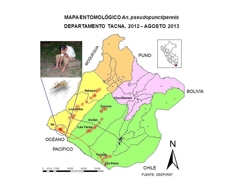 Gráfico 4: MAPA ENTOMOLÓGICO DE Triatoma infestans EN ÁREAS ENDÉMICAS DE TACNA, 2012 – AGOSTO 2013