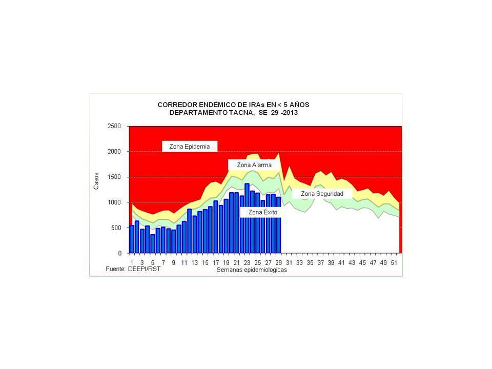 SALA SITUACIONAL 2011 – 2012 y SE 29 - 2013 Mayor información: epitacna@dge.gob.pe – Teléfono: 052-242595epitacna@dge.gob.pe DIRECCIÓN EJECUTIVA DE EPIDEMIOLOGÍA VIGILANCIA DE INFLUENZA Y OTROS VIRUS RESPIRATORIAS