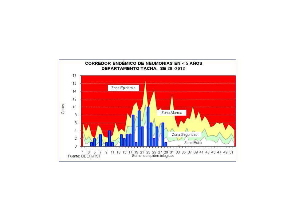 CASOS DE IRAS Y NEUMONIAS POR SEMANAS DEPARTAMENTO TACNA (SE 01 A 29 - 2012 y 2013) SEMANA 20122013 IRAs 1 Tasa x 1000 <5a.