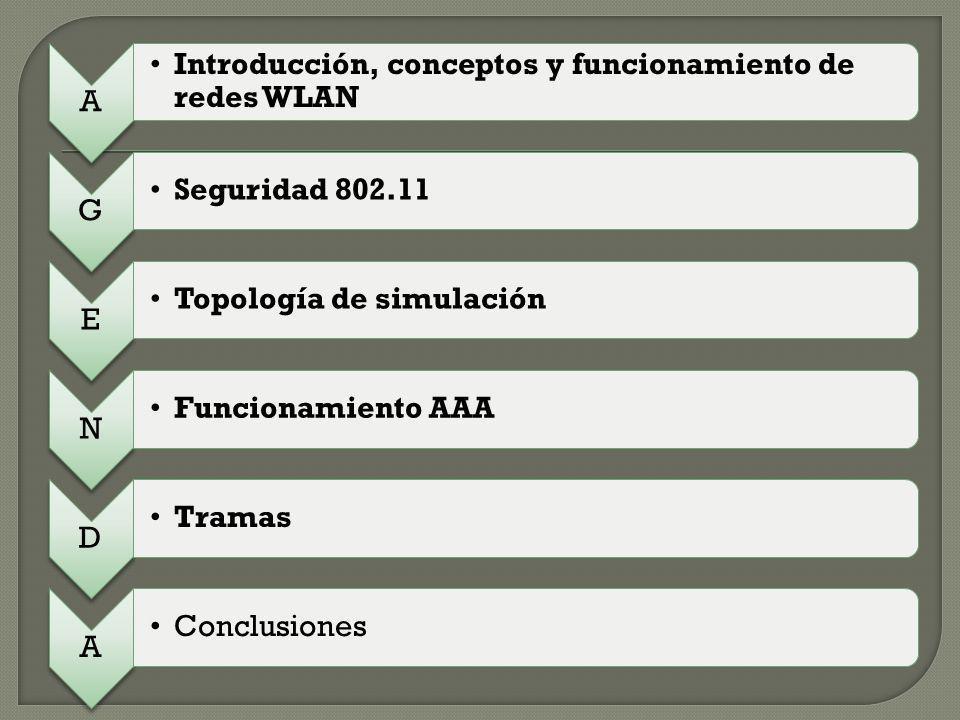 ENCABEZADO 802.11 No.