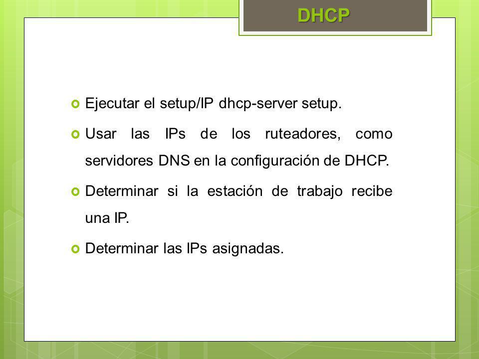 Ejecutar el setup/IP dhcp-server setup. Usar las IPs de los ruteadores, como servidores DNS en la configuración de DHCP. Determinar si la estación de