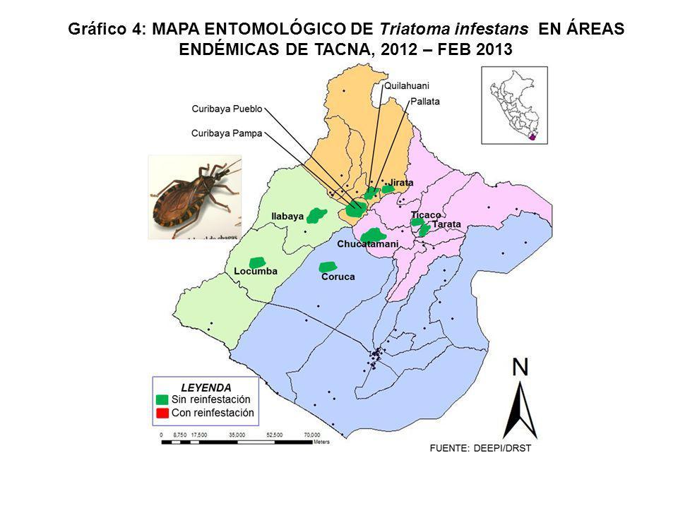 Gráfico 4: MAPA ENTOMOLÓGICO DE Triatoma infestans EN ÁREAS ENDÉMICAS DE TACNA, 2012 – FEB 2013