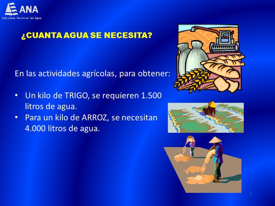 7 ¿CUANTA AGUA SE NECESITA? En las actividades agrícolas, para obtener: Un kilo de TRIGO, se requieren 1.500 litros de agua. Para un kilo de ARROZ, se