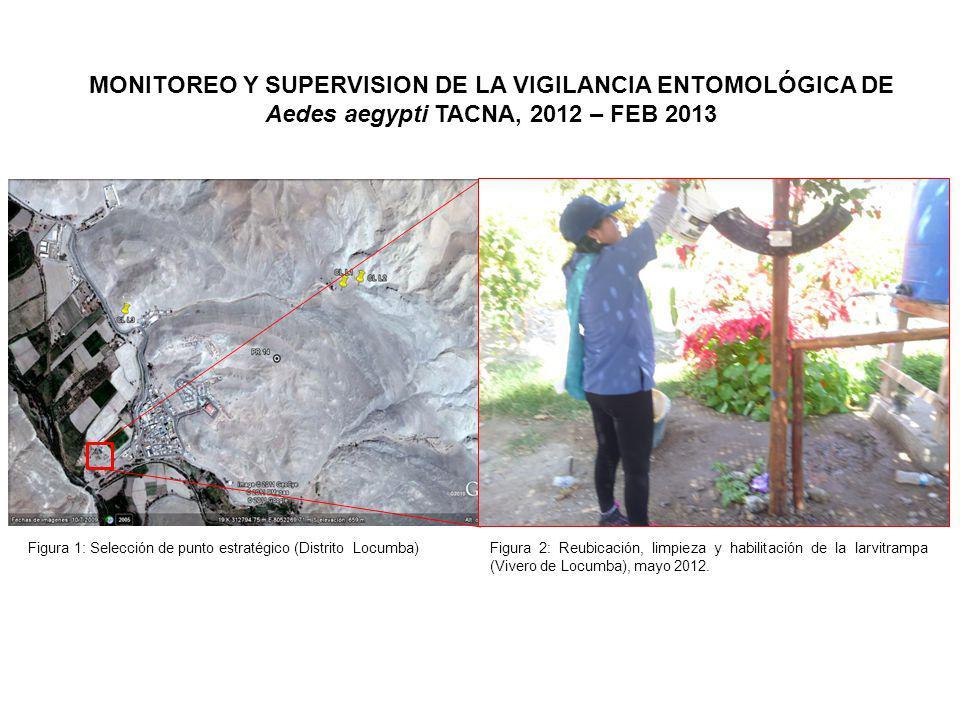 Figura 1: Selección de punto estratégico (Distrito Locumba)Figura 2: Reubicación, limpieza y habilitación de la larvitrampa (Vivero de Locumba), mayo