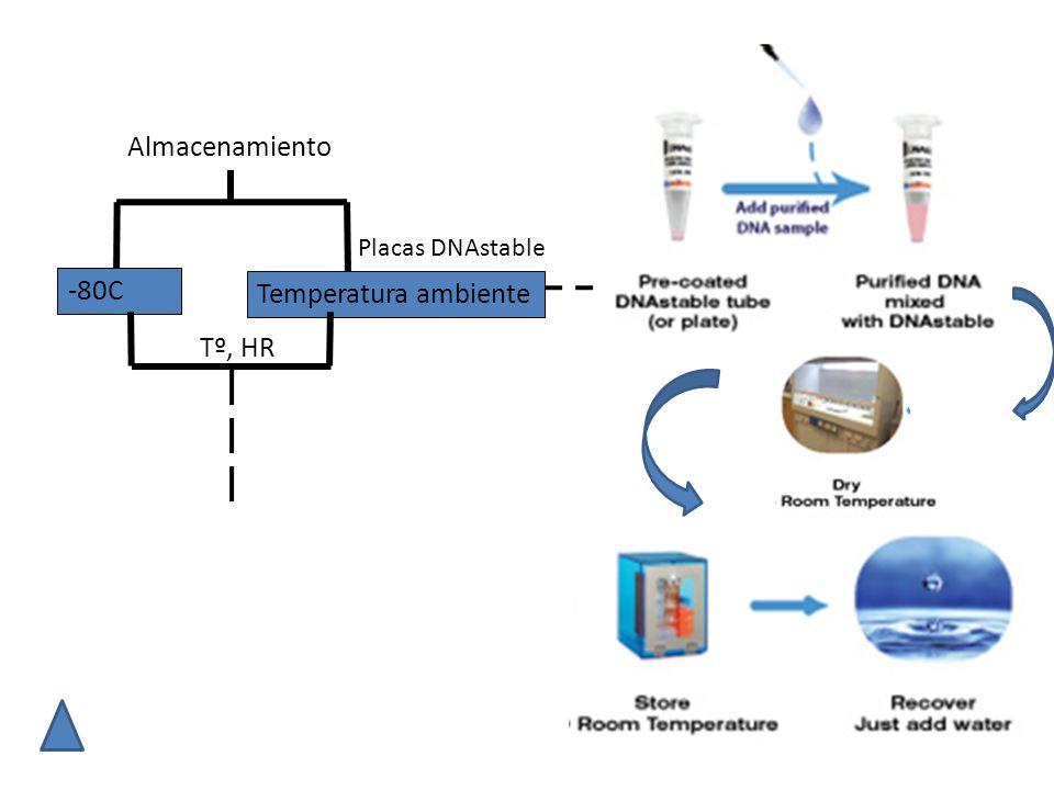 -80C Temperatura ambiente Almacenamiento Tº, HR Placas DNAstable
