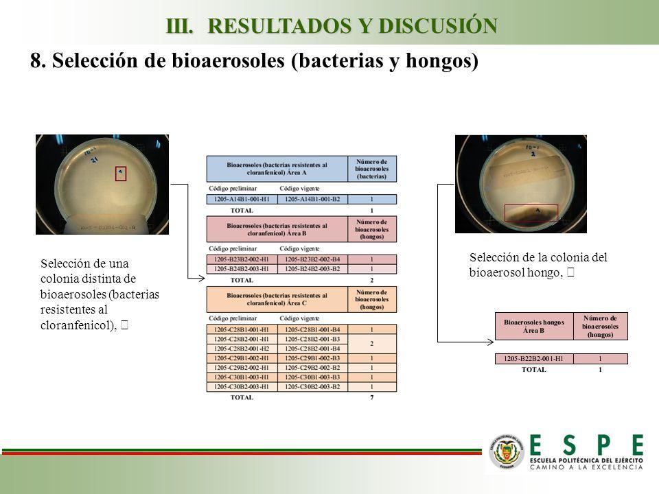 Selección de una colonia distinta de bioaerosoles (bacterias resistentes al cloranfenicol), Selección de la colonia del bioaerosol hongo, 8.