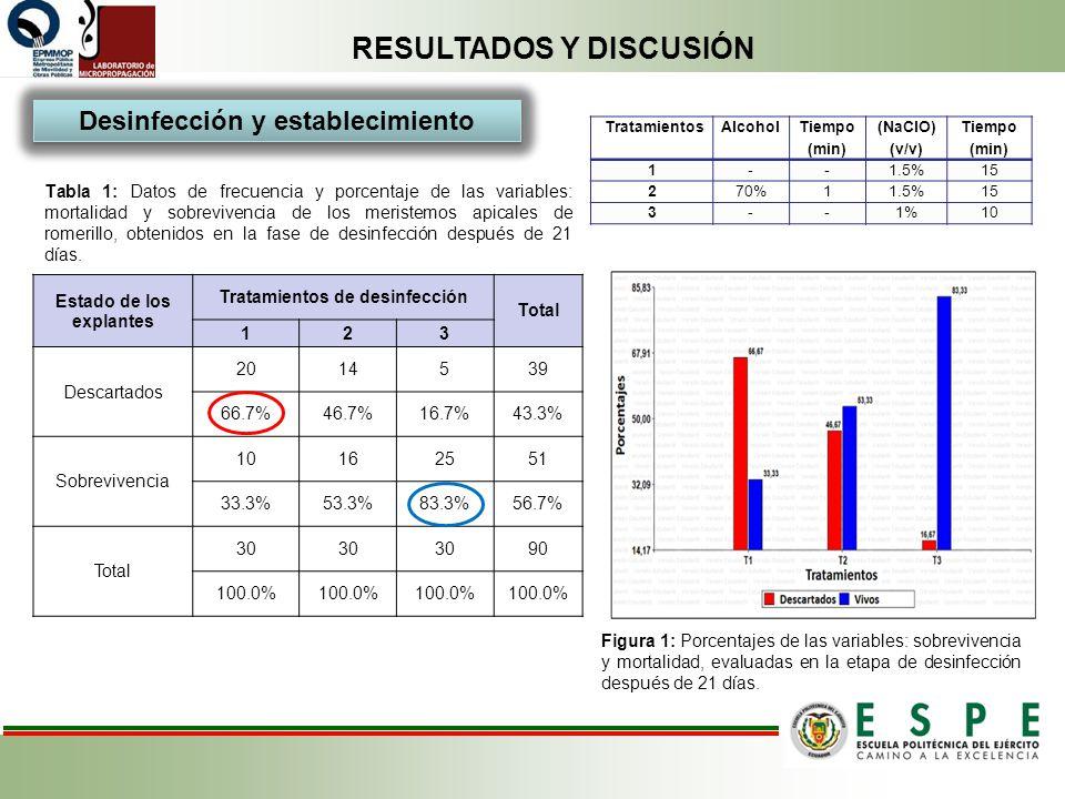 RESULTADOS Y DISCUSIÓN Desinfección y establecimiento Tabla 1: Datos de frecuencia y porcentaje de las variables: mortalidad y sobrevivencia de los me