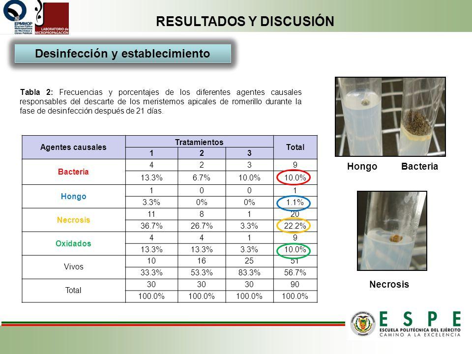 RESULTADOS Y DISCUSIÓN Tabla 2: Frecuencias y porcentajes de los diferentes agentes causales responsables del descarte de los meristemos apicales de r