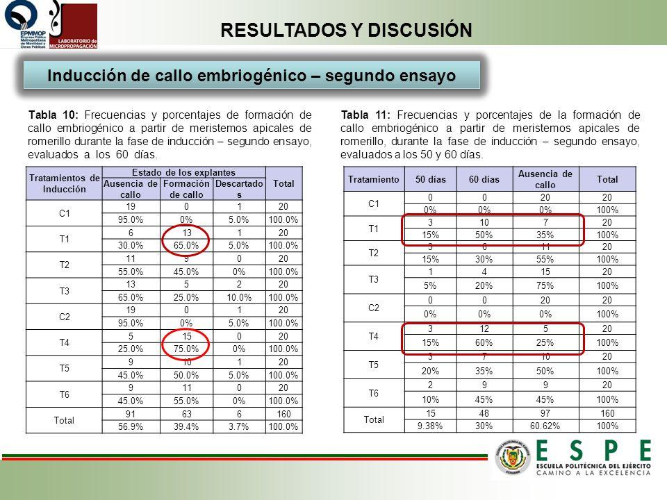 RESULTADOS Y DISCUSIÓN Tabla 10: Frecuencias y porcentajes de formación de callo embriogénico a partir de meristemos apicales de romerillo durante la