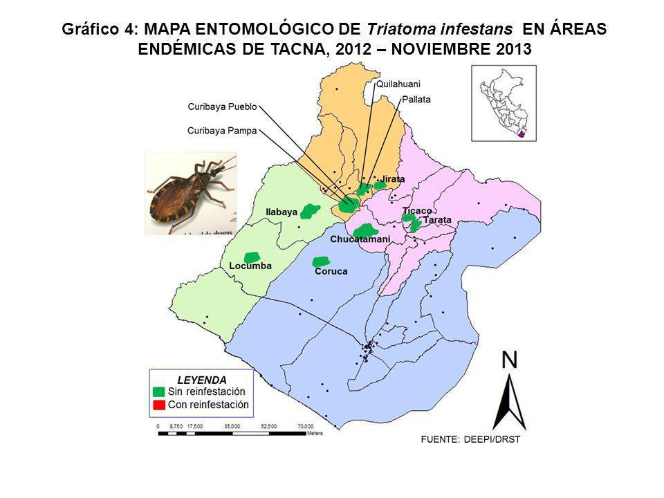 º FUENTE: DEEPI/OITE CHILE Candarave Camilaca Cairani Huanuara Ilabaya Locumba Ite Inclán Curibaya Quilahuani Susapaya Sitajara Ticaco Tarata C.