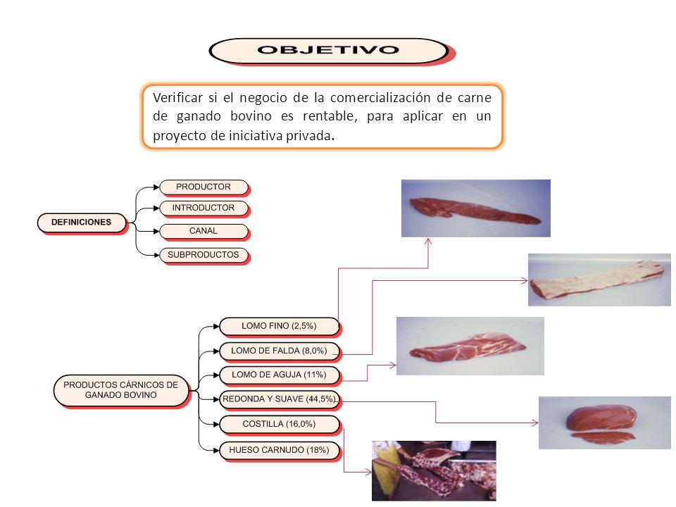 Verificar si el negocio de la comercialización de carne de ganado bovino es rentable, para aplicar en un proyecto de iniciativa privada.