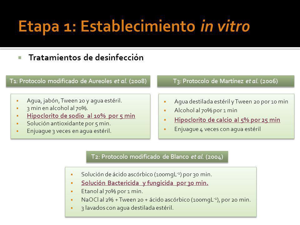 Tratamientos de desinfección T1: Protocolo modificado de Aureoles et al. (2008) Agua, jabón, Tween 20 y agua estéril. 3 min en alcohol al 70%. Hipoclo