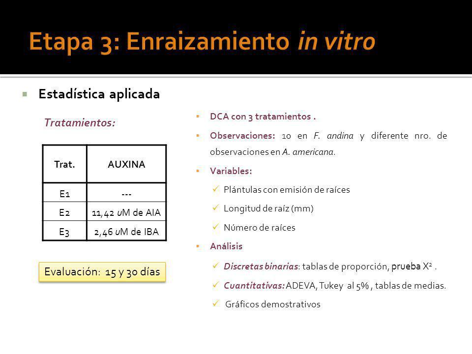 Estadística aplicada DCA con 3 tratamientos. Observaciones: 10 en F. andina y diferente nro. de observaciones en A. americana. Variables: Plántulas co