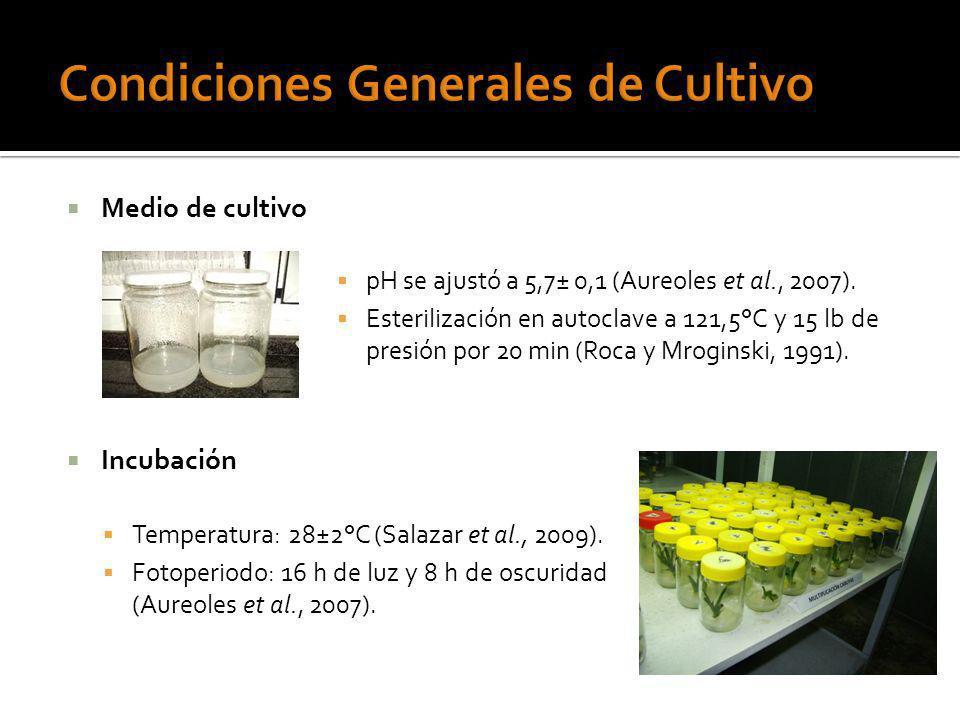 Medio de cultivo Incubación Temperatura: 28±2°C (Salazar et al., 2009). Fotoperiodo: 16 h de luz y 8 h de oscuridad (Aureoles et al., 2007). pH se aju