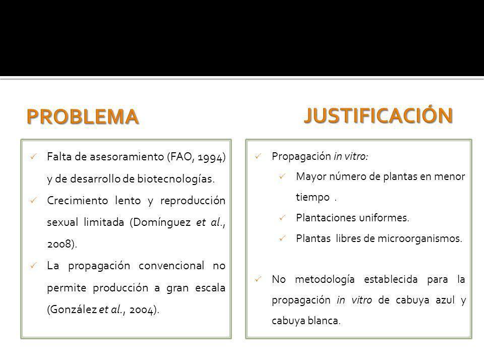 Falta de asesoramiento (FAO, 1994) y de desarrollo de biotecnologías. Crecimiento lento y reproducción sexual limitada (Domínguez et al., 2008). La pr