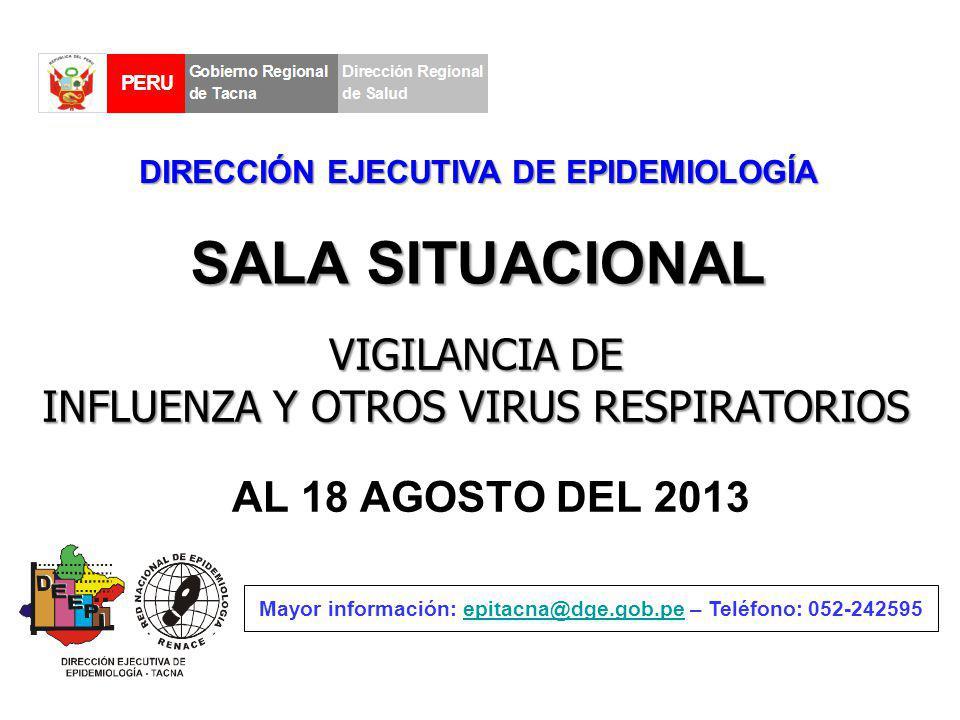 SALA SITUACIONAL AL 18 AGOSTO DEL 2013 Mayor información: epitacna@dge.gob.pe – Teléfono: 052-242595epitacna@dge.gob.pe DIRECCIÓN EJECUTIVA DE EPIDEMI