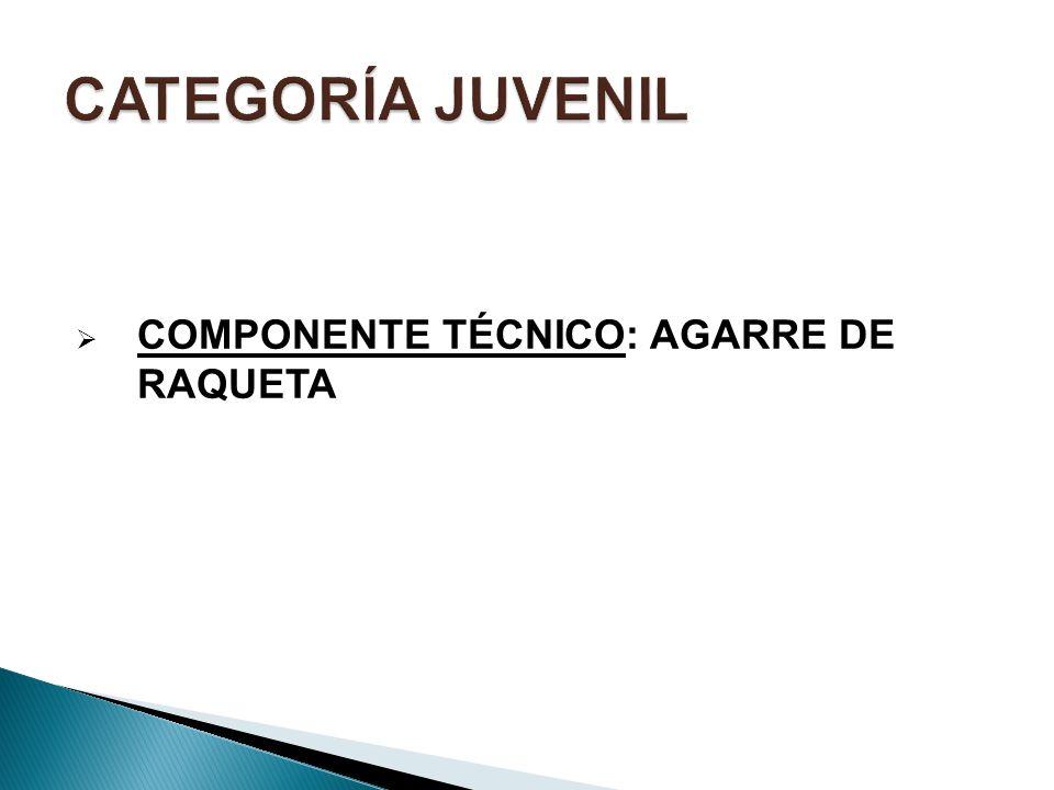 COMPONENTE TÉCNICO: AGARRE DE RAQUETA