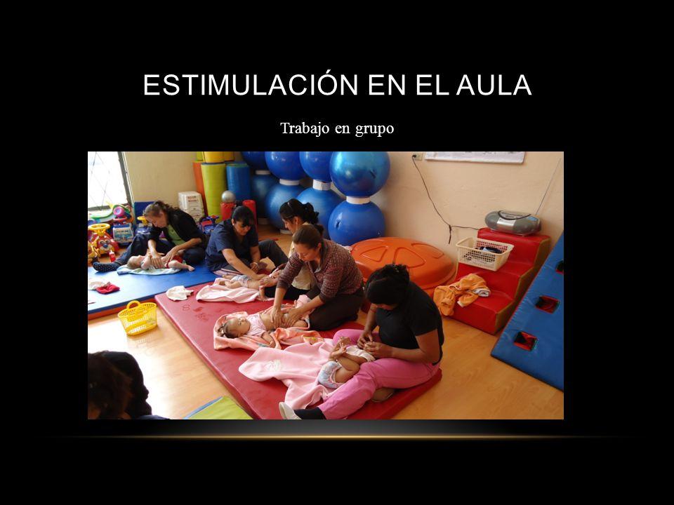 ESQUEMA DE PROPUESTA Elaboración de un folleto motivador y preparación de una guía de ejercicios multisensoriales para padres y profesionales. ESTIMUL