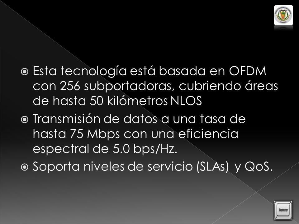 El primer enlace (punto a punto) por radio, desde la Antena del Cerro Ilalo hasta la Estación del Portador de Datos (ENLACE 1) El segundo enlace, (enlace WiMAX), será PMP de última milla, desde la antena ubicada en el cerro Ilaló hacia cada uno de los usuarios en el sector del Valle de Tumbaco (ENLACE 2)