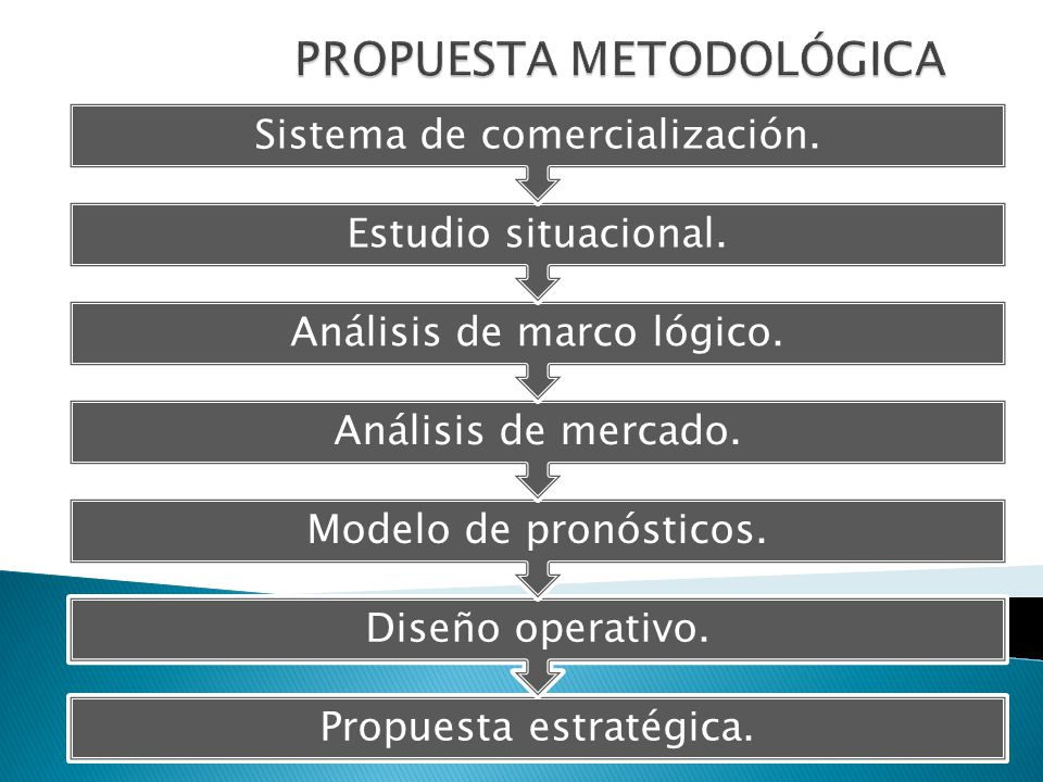Propuesta estratégica. Diseño operativo. Modelo de pronósticos. Análisis de mercado. Análisis de marco lógico. Estudio situacional. Sistema de comerci