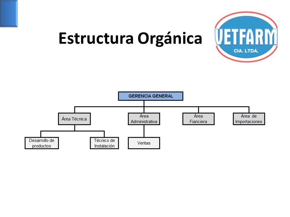 Estructura Orgánica