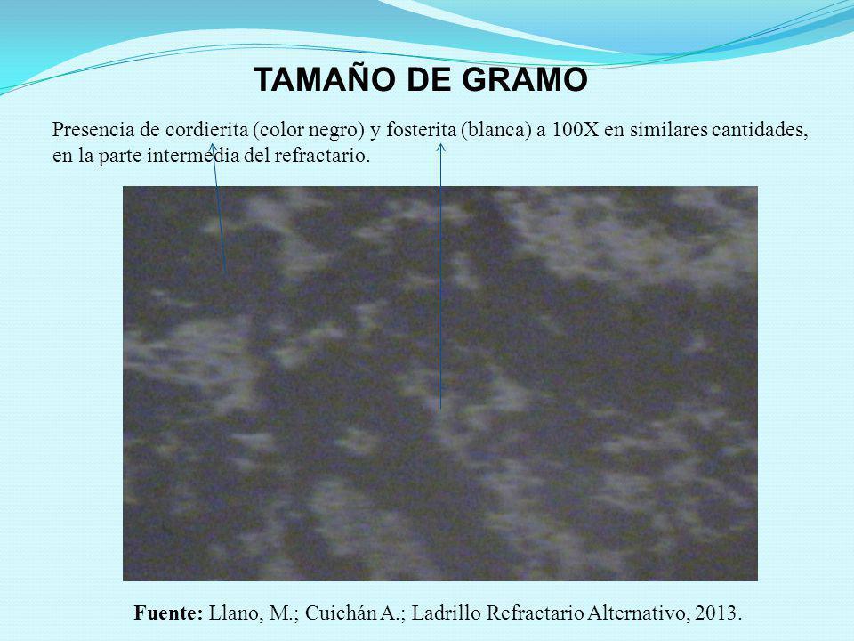 TAMAÑO DE GRAMO Presencia de cordierita (color negro) y fosterita (blanca) a 100X en similares cantidades, en la parte intermedia del refractario. Fue