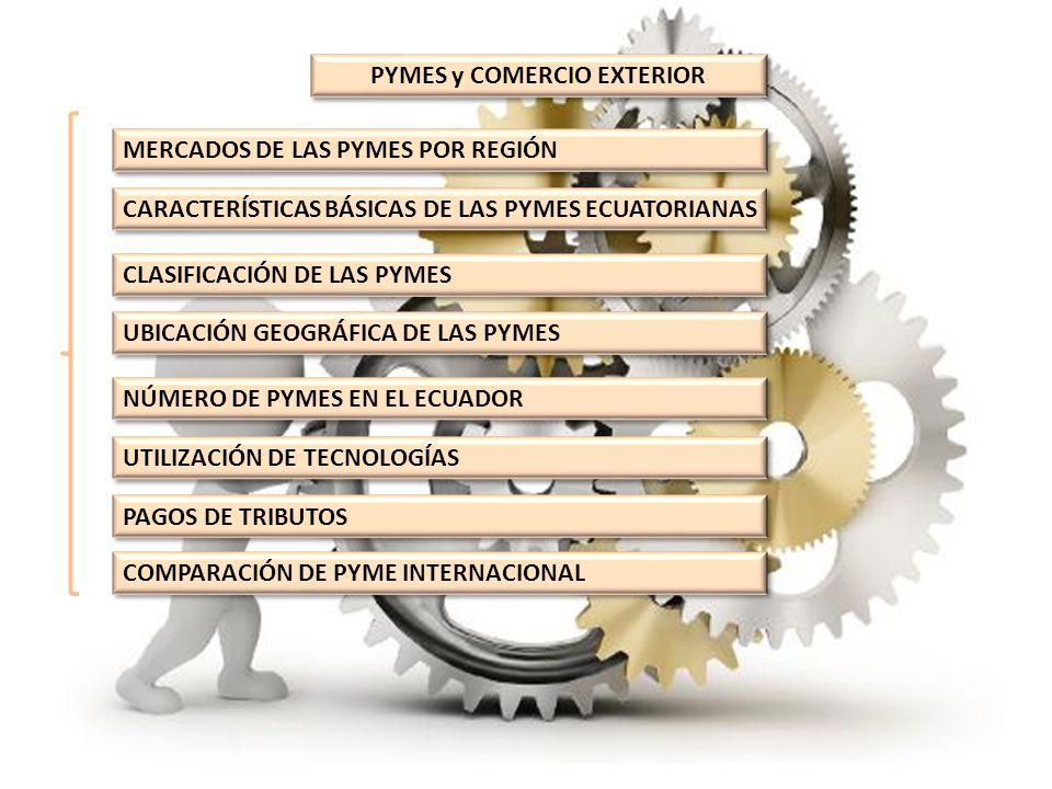 MERCADOS DE LAS PYMES POR REGIÓN MERCADOSMEDIANASPEQUEÑAS Local38%71% Nacional62%28% Extranjero0%1% TOTAL100% MERCADOS DE LAS PYMES POR REGIÓN
