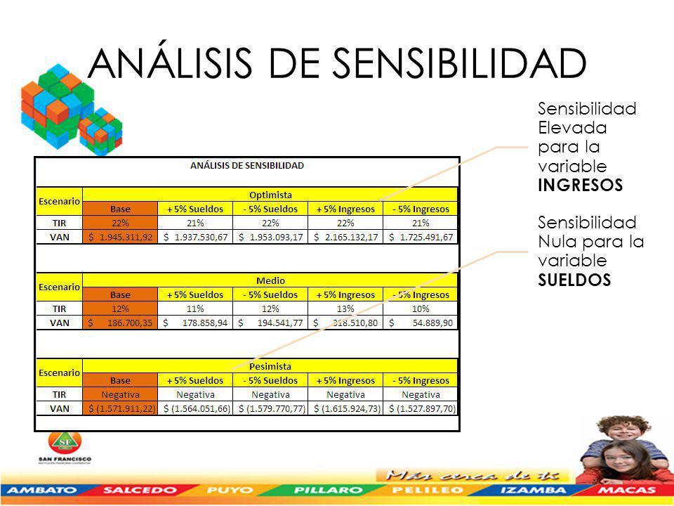 ANÁLISIS DE SENSIBILIDAD Sensibilidad Elevada para la variable INGRESOS Sensibilidad Nula para la variable SUELDOS
