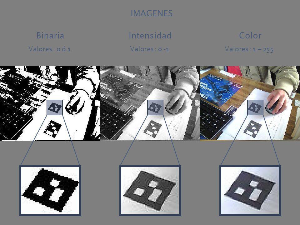 Valores : 0 ó 1Valores : 0 -1Valores : 1 – 255 BinariaIntensidadColor IMAGENES