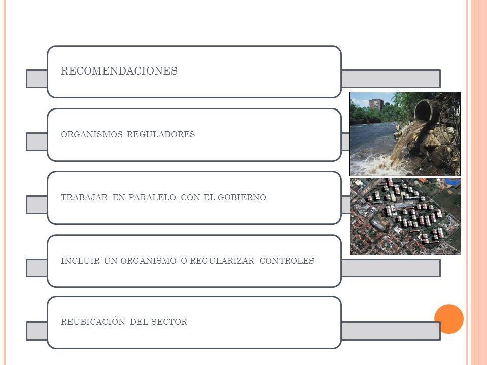 RECOMENDACIONES ORGANISMOS REGULADORESTRABAJAR EN PARALELO CON EL GOBIERNOINCLUIR UN ORGANISMO O REGULARIZAR CONTROLESREUBICACIÓN DEL SECTOR