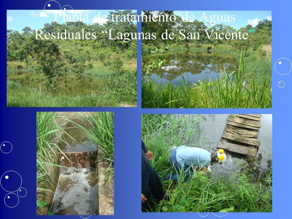 Planta de tratamiento de Aguas Residuales Lagunas de San Vicente