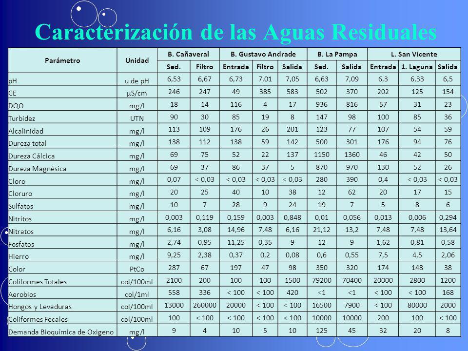 Caracterización de las Aguas Residuales ParámetroUnidad B. CañaveralB. Gustavo AndradeB. La PampaL. San Vicente Sed.FiltroEntradaFiltroSalidaSed.Salid