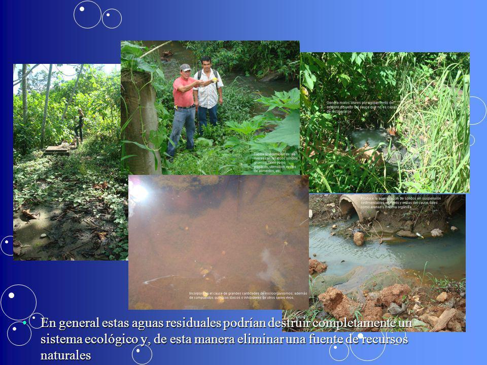 En general estas aguas residuales podrían destruir completamente un sistema ecológico y, de esta manera eliminar una fuente de recursos naturalesEn ge
