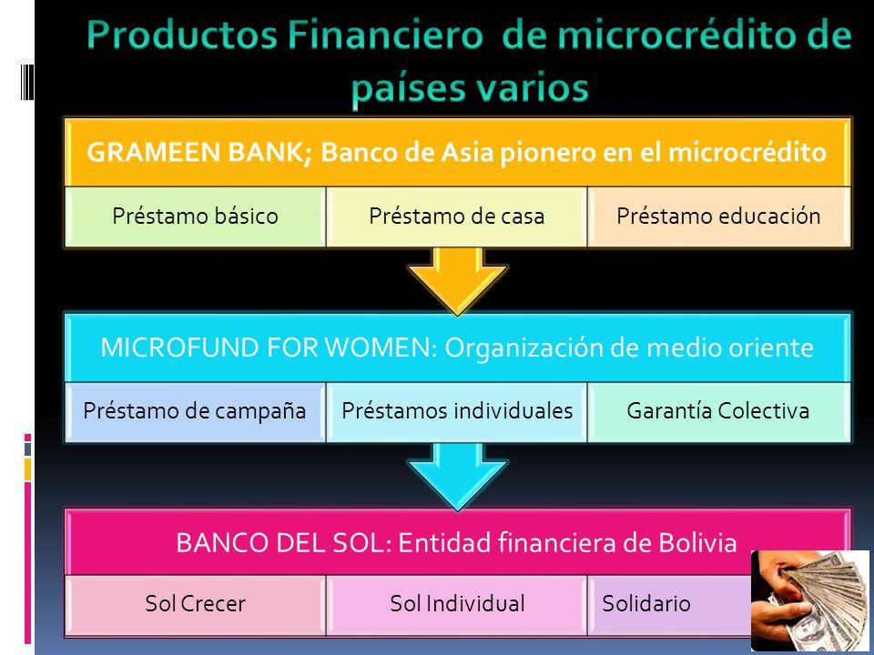 BANCO DEL SOL: Entidad financiera de Bolivia Sol CrecerSol IndividualSolidario MICROFUND FOR WOMEN: Organización de medio oriente Préstamo de campañaP