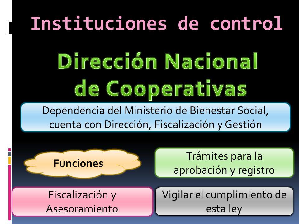 Instituciones de control Funciones Fiscalización y Asesoramiento Vigilar el cumplimiento de esta ley Dependencia del Ministerio de Bienestar Social, c