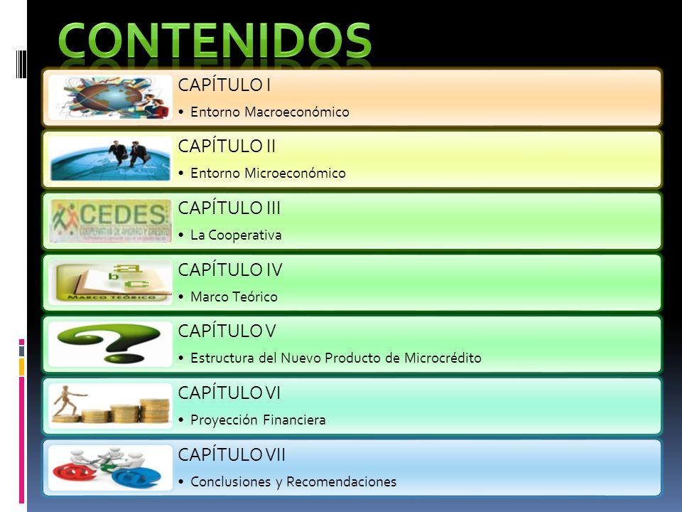 CAPÍTULO I Entorno Macroeconómico CAPÍTULO II Entorno Microeconómico CAPÍTULO III La Cooperativa CAPÍTULO IV Marco Teórico CAPÍTULO V Estructura del N
