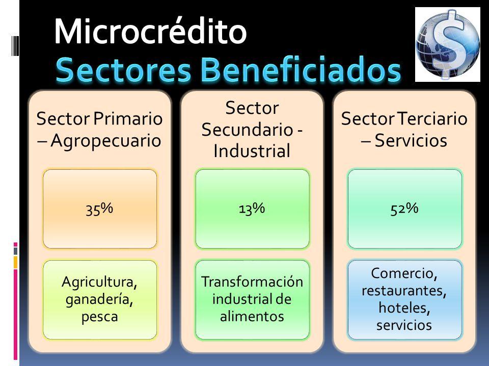 Sector Primario – Agropecuario 35% Agricultura, ganadería, pesca Sector Secundario - Industrial 13% Transformación industrial de alimentos Sector Terc