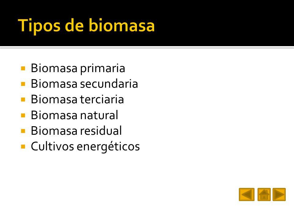 Biomasa primaria Biomasa secundaria Biomasa terciaria Biomasa natural Biomasa residual Cultivos energéticos