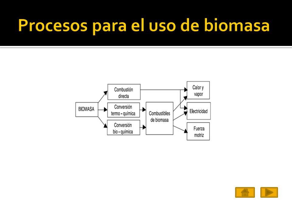 Procesos de la biomasa para uso como combustible Tipos de procesosDescripciónTiempo que tarda el proceso Uso directo de la biomasaCombustiónHoras Fermentación alcohólicaFermentación mediante levadurasDías Transformación de ácidos grasosProcesos químicosDias Transformación anaeróbica Bacterias que permiten la liberación de metano Días Gasificación por pirolisis Descomposición fisicoquímica bajo acción del calor Minutos http://www.mailxmail.com/curso-biomasa-energias-renovables/proceso-pirolisis