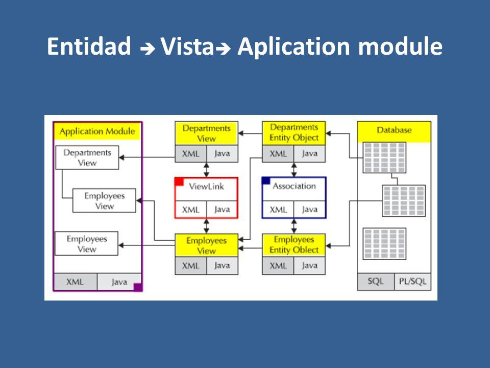 Entidad Vista Aplication module